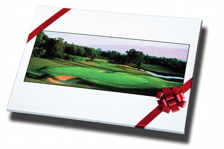 swing f minin le 1er site 100 golfeuses. Black Bedroom Furniture Sets. Home Design Ideas