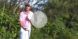 Compressez la balle avec vos fers ! Cours de golf par Renaud Poupard