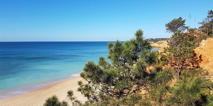 Vue océan du Club Med Da Balaia